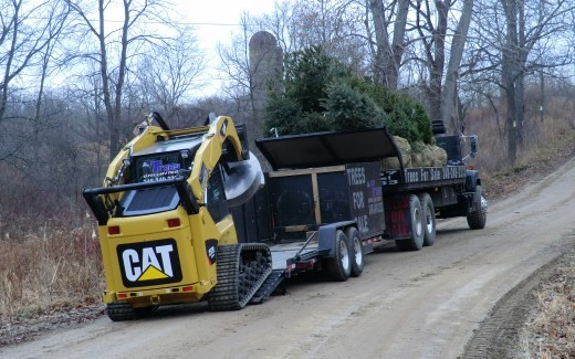 Pro Trees Unlimited delivering evergreens