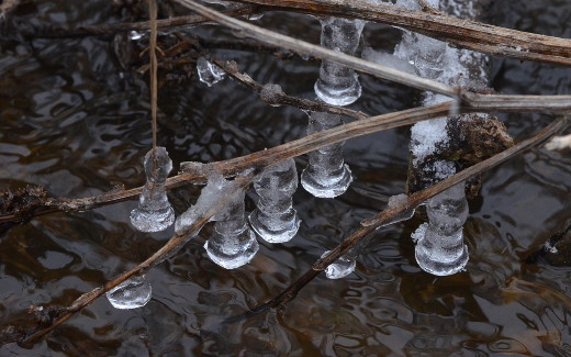 Ice bells