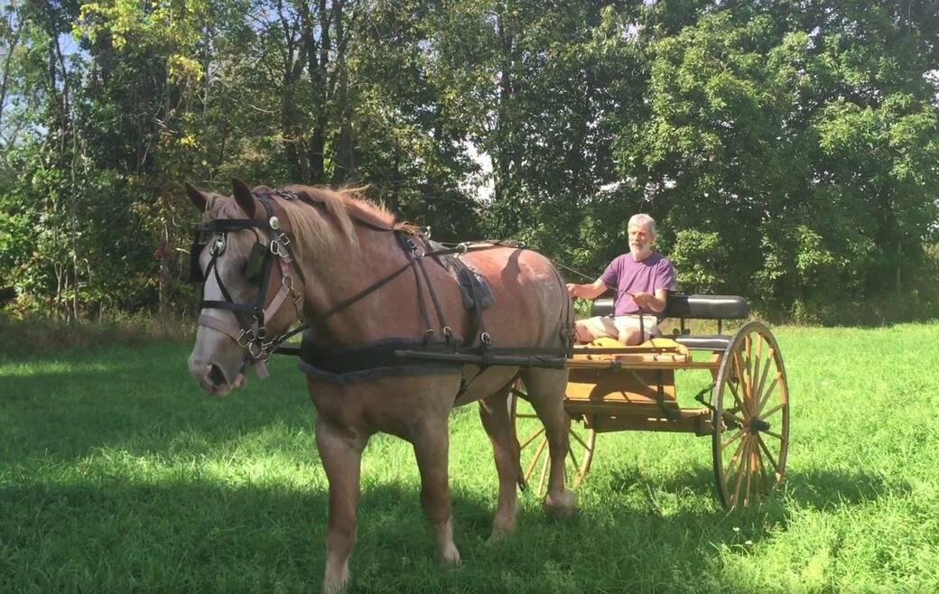Jake, Kurt, meadowbrook cart